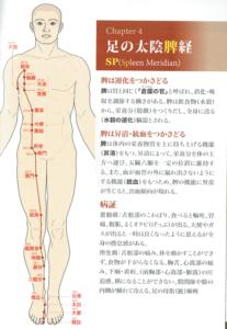 足の太陰脾経