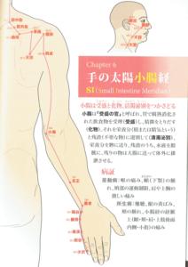 手の太陽小腸経
